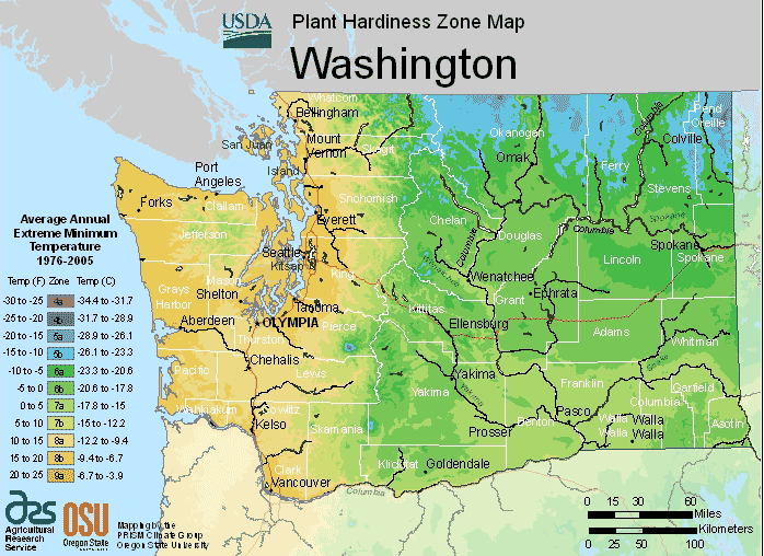 Washington Climate-Zones Map Image