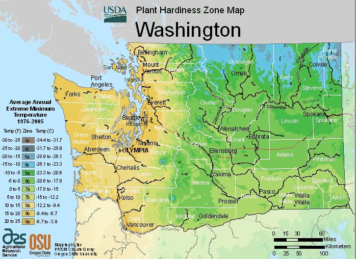 Washington Climate-Zones Map Image