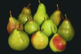 Various pears